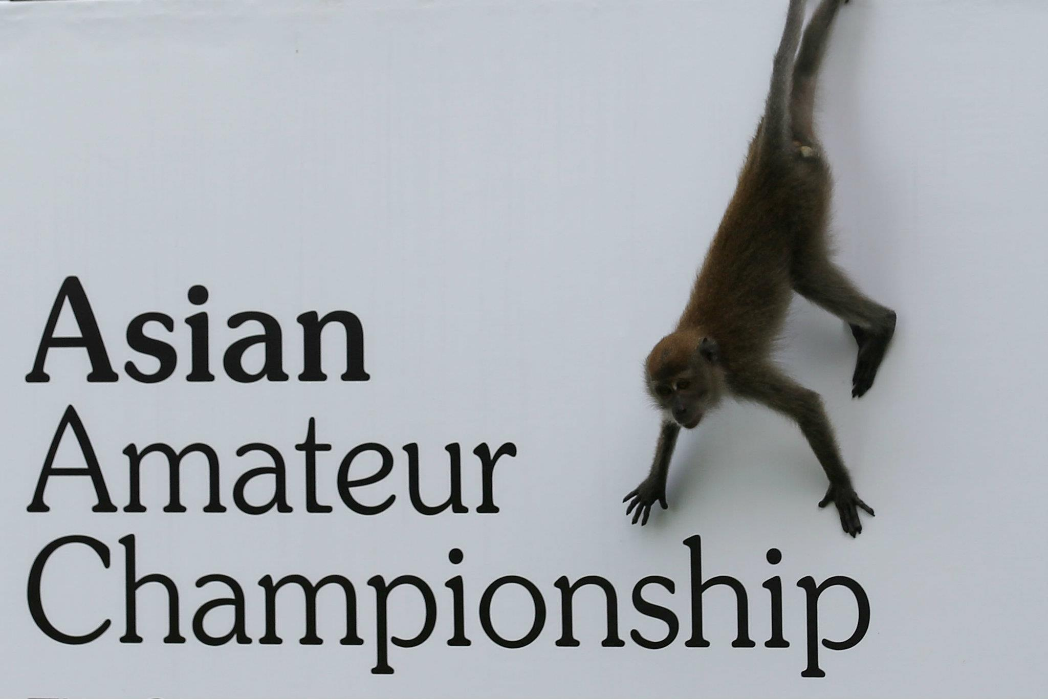 Asian Amateur winner of asian amateur championship to receive invitation
